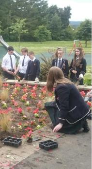 MacRosty Pavilion summer planting 2015
