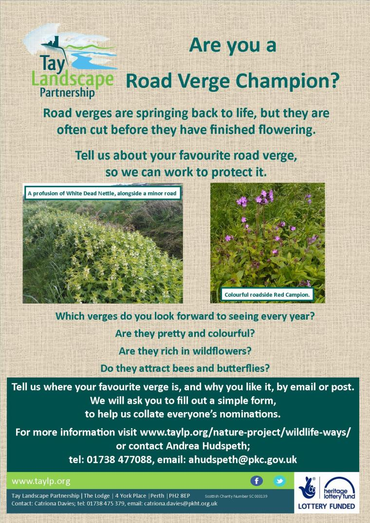 Road Verge Champions poster