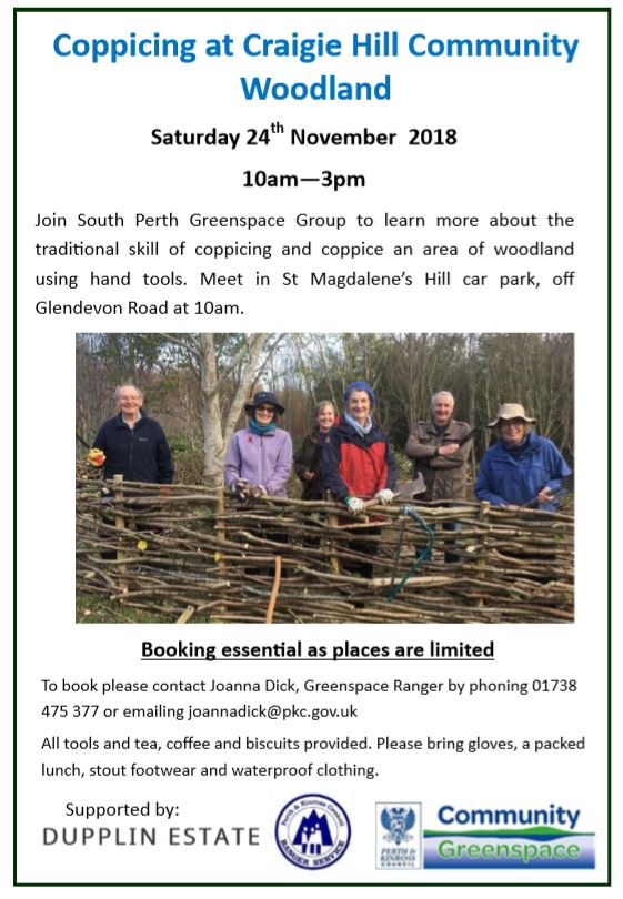 Coppicing Poster Pic 13.1.18